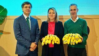 Plátano de Canarias llevará un etiquetado biodegradable