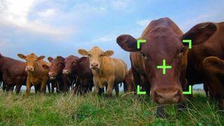 La agricultura entra de lleno en la cuarta revolución industrial