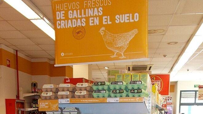 Supersol sólo vende ya huevos de gallinas criadas en suelo