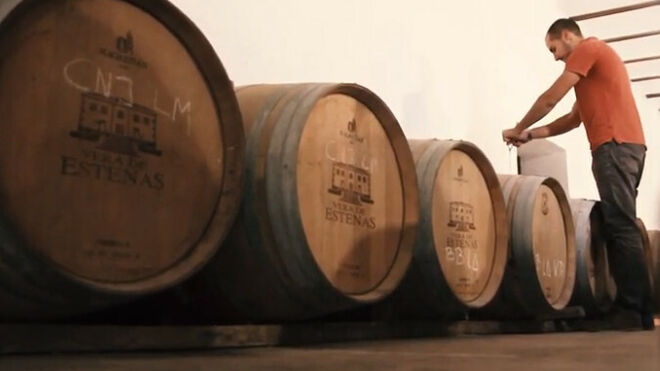 Los vinos Vera de Estenas entran en el registro protegido de la UE
