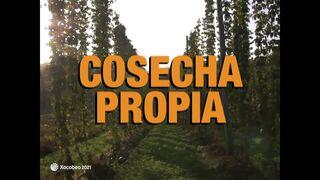 Estrella Galicia presenta una India Pale Lager con tres variedades de lúpulo de cosecha propia