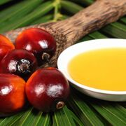 ¿Es el aceite de palma una grasa trans?