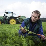 La UE y EE.UU. logran reajustar las cuotas agrícolas europeas tras el Brexit