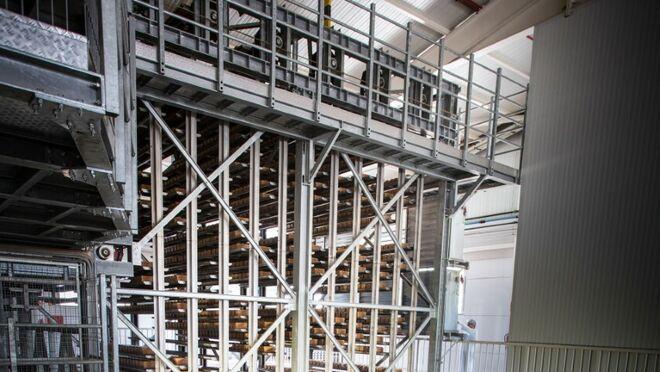 Vicky Foods duplicará su capacidad productiva de pan