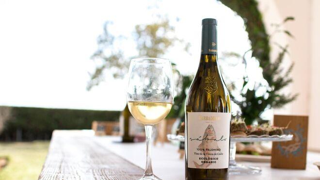 Barbadillo presenta Sábalo, su nuevo vino blanco ecológico