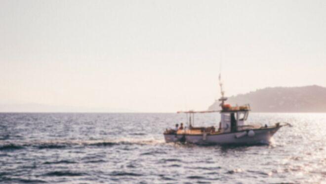 Pescanova creció casi el 12% en ventas en 2019