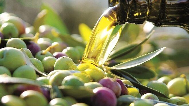 El consumo de aceite de oliva se incrementó el  9% en España en 2019