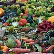 Ley catalana de desperdicio de alimentos