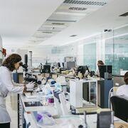 Nuevo servicio para detectar el coronavirus en la industria alimentaria