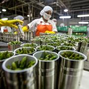 Fiab impulsa la recuperación de las empresas de alimentación tras la Covid