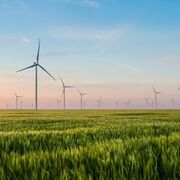 Nestlé apoya una recuperación saludable y verde post Covid-19
