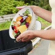 7 de cada 10 consumidores desperdiciaron más comida durante el confinamiento