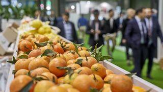 Fruit Attraction 2020 será telepresencial