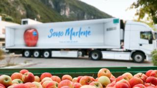 Las manzanas Marlene debutan en Catar, Tailandia y Emiratos Árabes