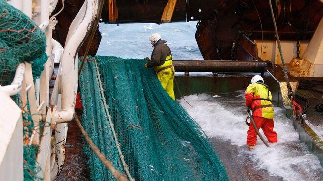 La UE negocia un certificado digital del pescado