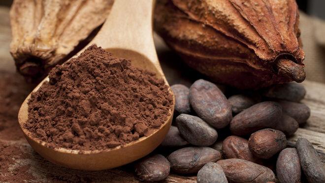 El cacao natural mejora la atención y la concentración en niños y adolescentes