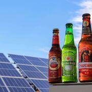 El sol es el nuevo ingrediente secreto de las cervezas Cruzcampo, Amstel y Heineken