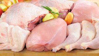 Propollo se alía para impulsar las exportaciones de carne avícola