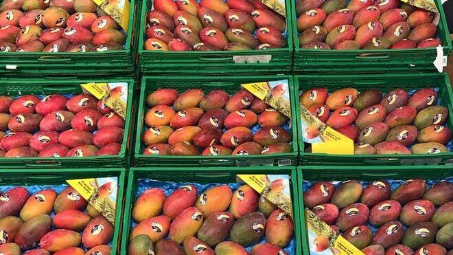 El mango, la fruta imprescindible en Mercadona, ahora en temporada