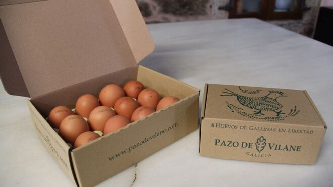 """El huevo campero, nuevo """"súper alimento"""" de los fans de la alimentación sana"""