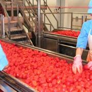 Fiab impulsa la actividad industrial alimentaria en Andalucía