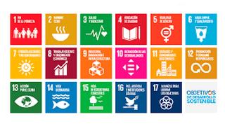 Analisis legal de la sostenibilidad del sector: de los ODS a la regulación ambiental