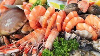5 beneficios del consumo de marisco en Navidad… y durante todo el año