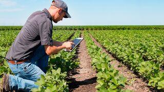 Alimentación y logística tirarán del empleo en 2021