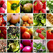 Retos legislativos agroalimentarios para 2021