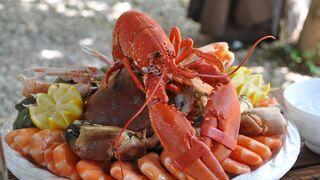 Todo lo que hay que saber sobre el marisco: propiedades, colesterol, anisakis...