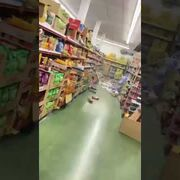 Terremoto en Granada: así queda un supermercado tras el seísmo