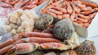 El sector de alimentos congelados estima una caída del 3% en 2020