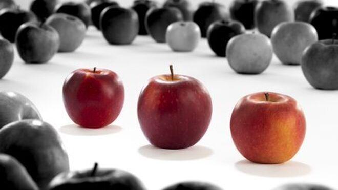 Los consorcios VOG y VIP presentan tres nuevas variedades de manzanas