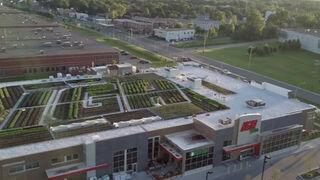 El supermercado que vende la fruta y verdura que cultiva en su techo