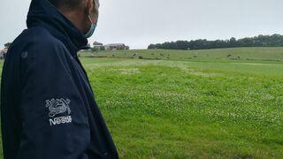 Nestlé colabora con SEO/Birdlife para preservar la biodiversidad en sus granjas
