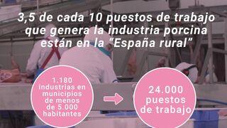 Las industrias de porcino generan 24.000 empleos en la España rural