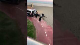 Espectacular persecución policial a los atracadores de un súper en Fuengirola (Málaga)