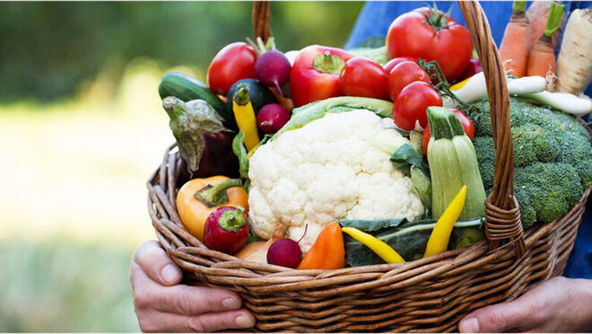 La facturación de alimentación y comercio mayorista alimentario sigue en aumento
