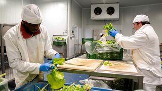 La producción de alimentos y bebidas repunta en abril