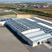 Hinojosa facturó 430 millones de euros en 2020 gracias al online y la alimentación