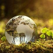 Las empresas de gran consumo multiplican su apuesta sostenible