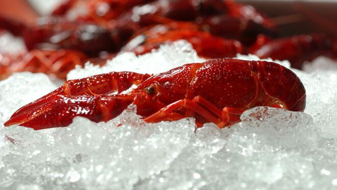 Alcampo apuesta por el cangrejo rojo de producción local y sostenible