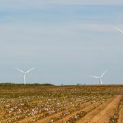 Amazon presenta nuevos proyectos de energía renovable en Extremadura y Andalucía