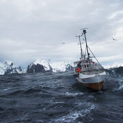 Las exportaciones de productos del mar noruegos alcanzan un máximo histórico en marzo