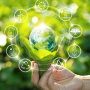 El 46% de los españoles elegiría una marca reconocida por ser sostenible