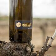 Arrancan las primeras catas del 'Gran Vino de Rueda''