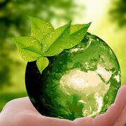 Suspenso en sostenibilidad: la mitad de los fabricantes no puede alcanzar los Acuerdos de París