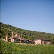 La familia Entrecanales Domecq compra y cambia el nombre a Bodegas Palacio 1894