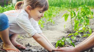 Procter & Gamble busca innovaciones para avanzar en sostenibilidad