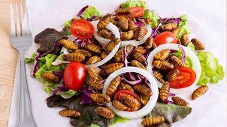El consumo de insectos ya es una realidad en Europa